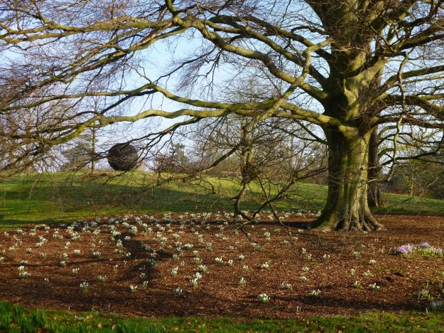 Snowdrops and sculpture at Kew