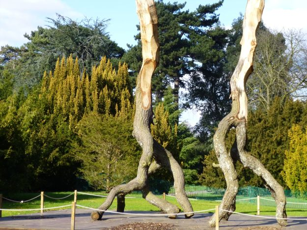 David Nash sculptures at Kew