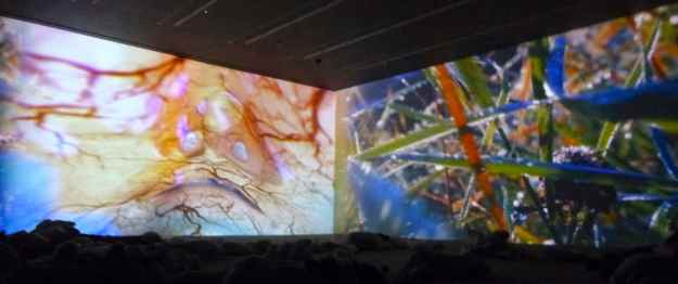 Pipilotti Rist Worry Will Vanish